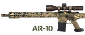 AR-10 Rifles & Components